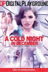 A Cold Night In December